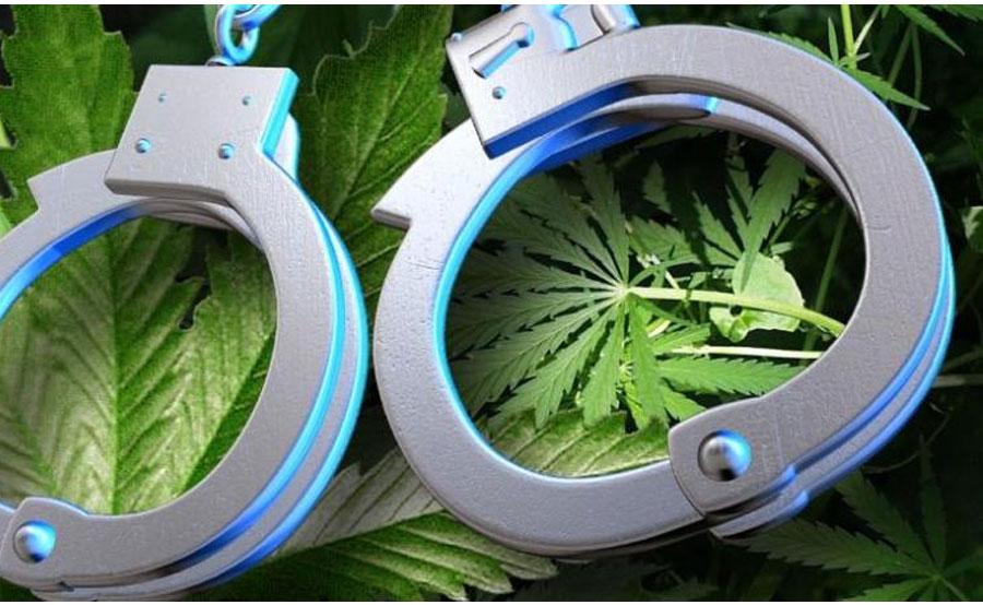 arrested-marijuana