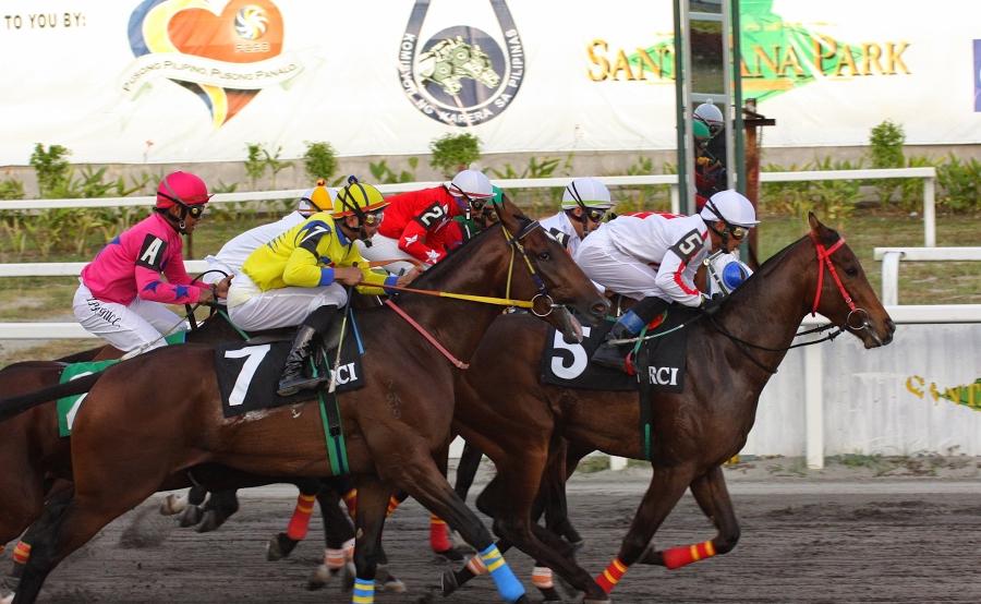 horse-race-10