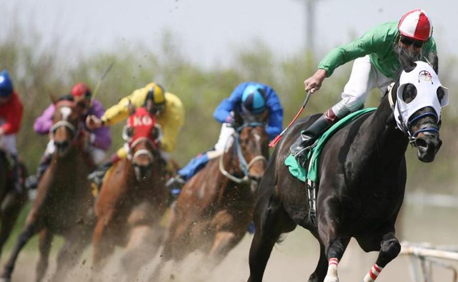 horse-race-9