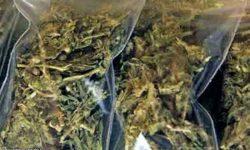 2 estudyanteng tulak ng marijuana, nasakote sa Cainta